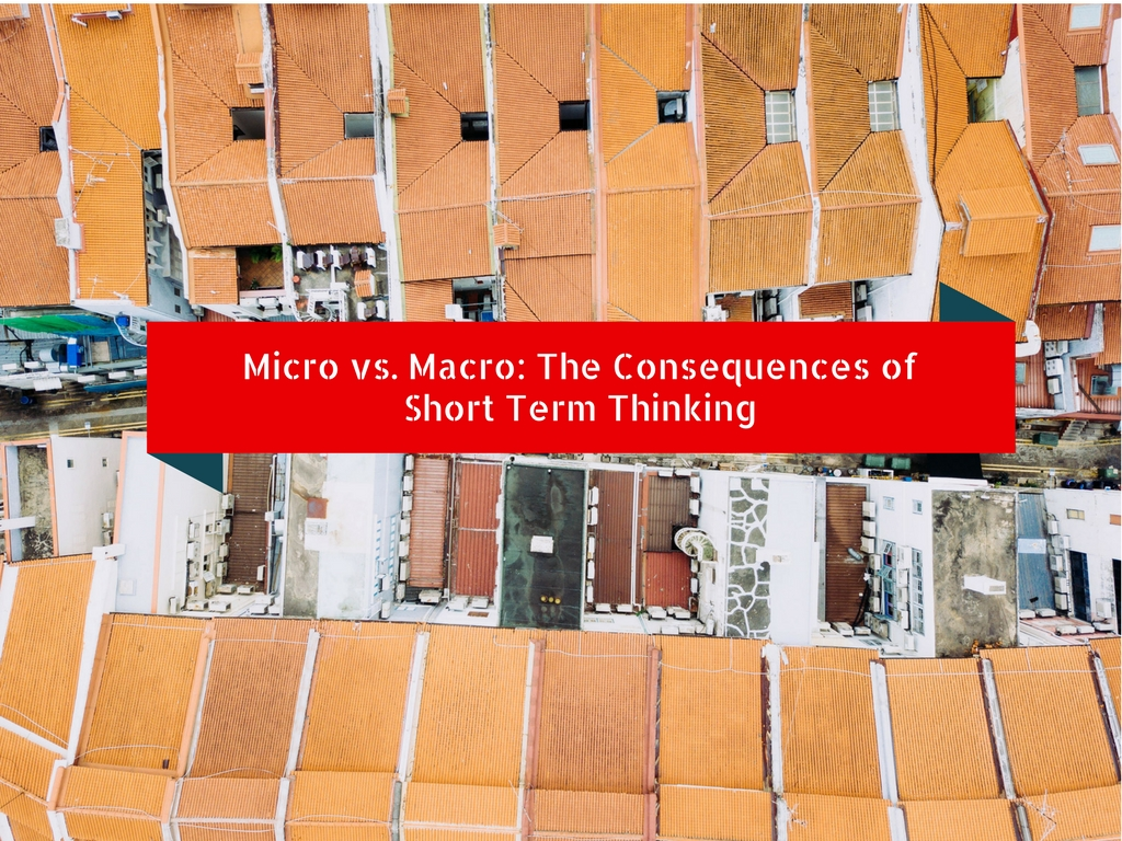 Micro vs. Macro: The Consequences of Short Term Thinking